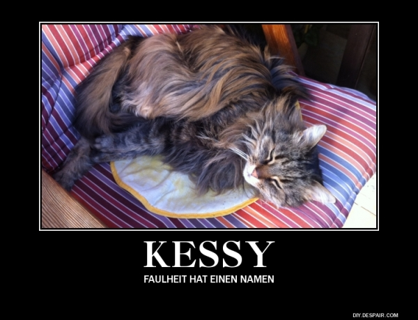 Kessys Motivationsposter