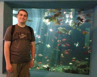 Ein völlig fertiger Sicarius im Aquarium von Wasserbillig
